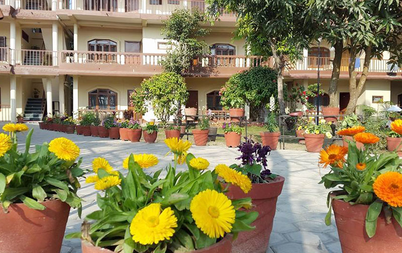 A lovely garden infront of hotel